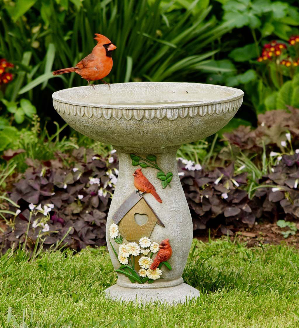 Bird bath How to attract cardinals in the back yard of your home (great tips)