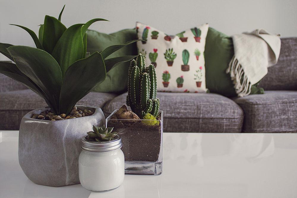 designecologist-628402-unsplash Five ways to embrace the Wabi-Sabi home design trend
