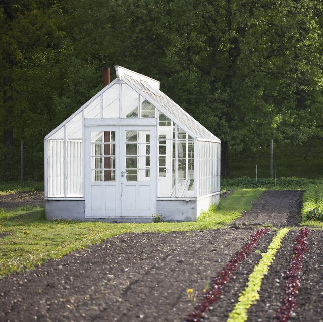 30 DIY Backyard Greenhouses - How to Make a Greenhou