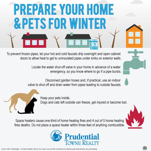 INFOGRAPHIC] Prepare Your Home & Pets for Winter. Tips for keeping .