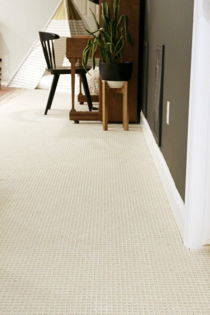 5 tips for an animal-friendly carpet   decoration