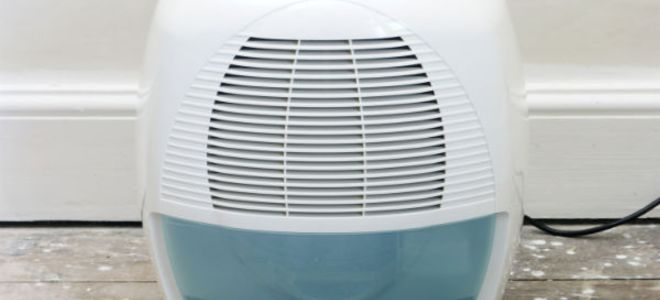 5 Tips for Getting the Most From a Basement Dehumidifier .