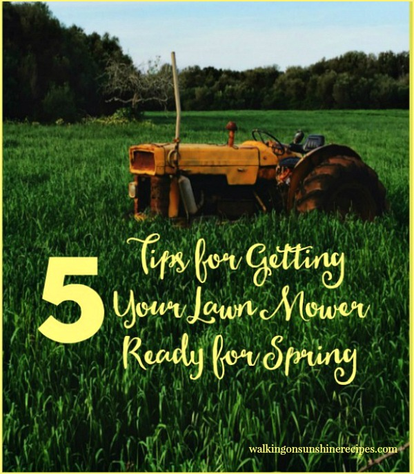 5 Tips for Annual Lawn Maintenance Care | Gardeni