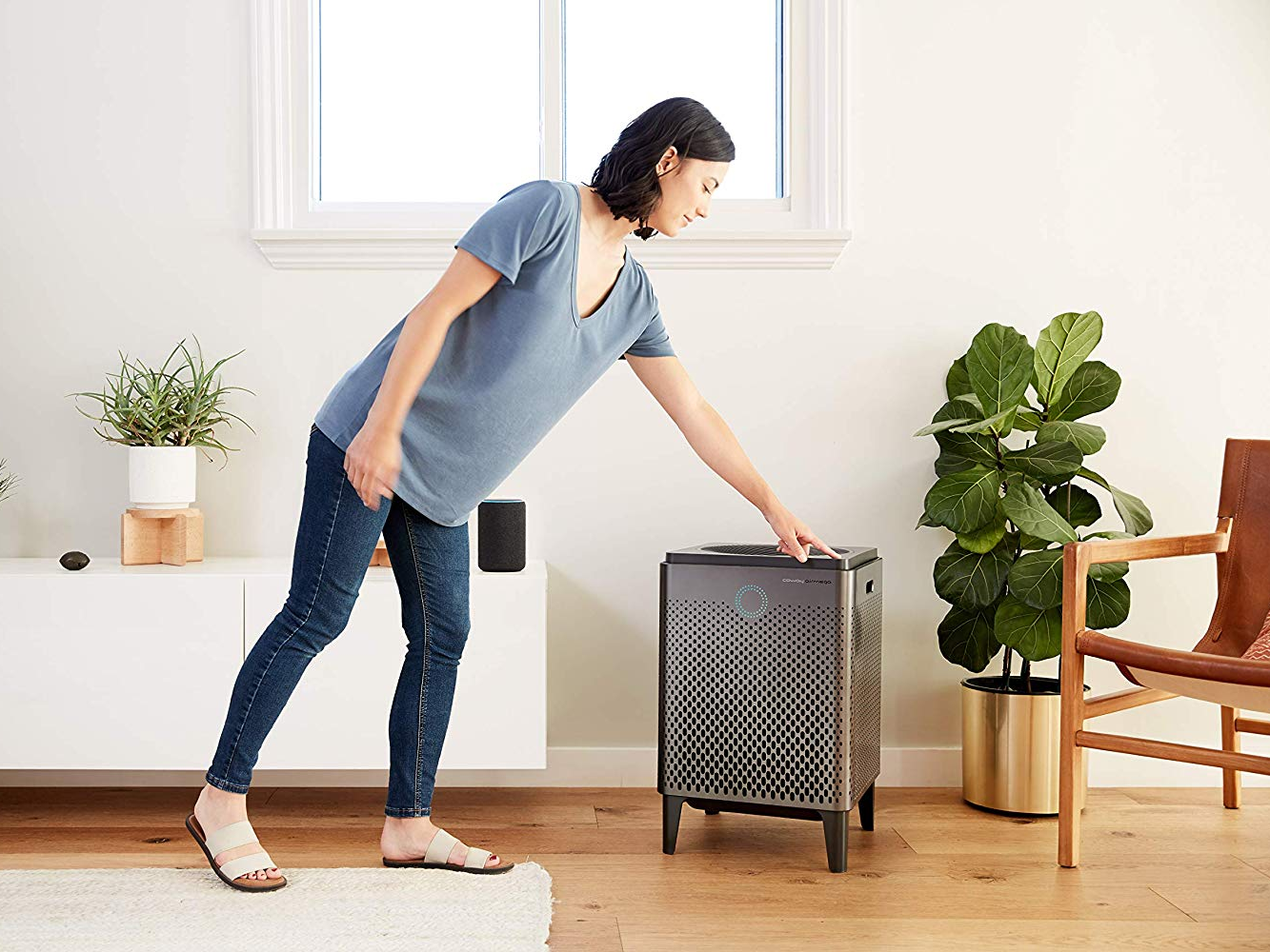 6 reasons why you should buy an air   purifier for your home