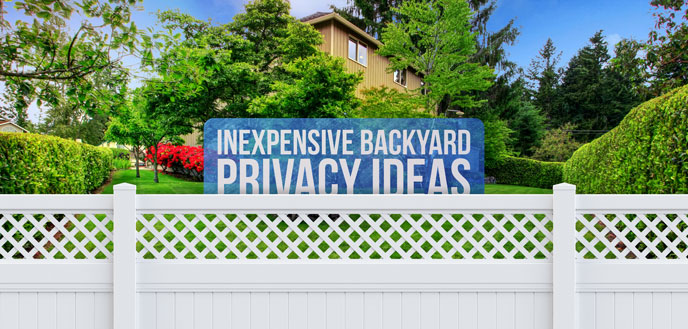 7 Inexpensive Backyard Privacy Ideas | Budget Dumpst