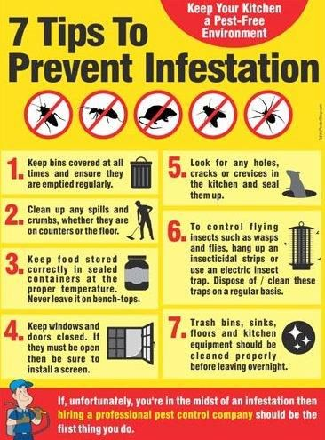 5 Tips for Repelling Pests! | Food safety posters, Food safety .