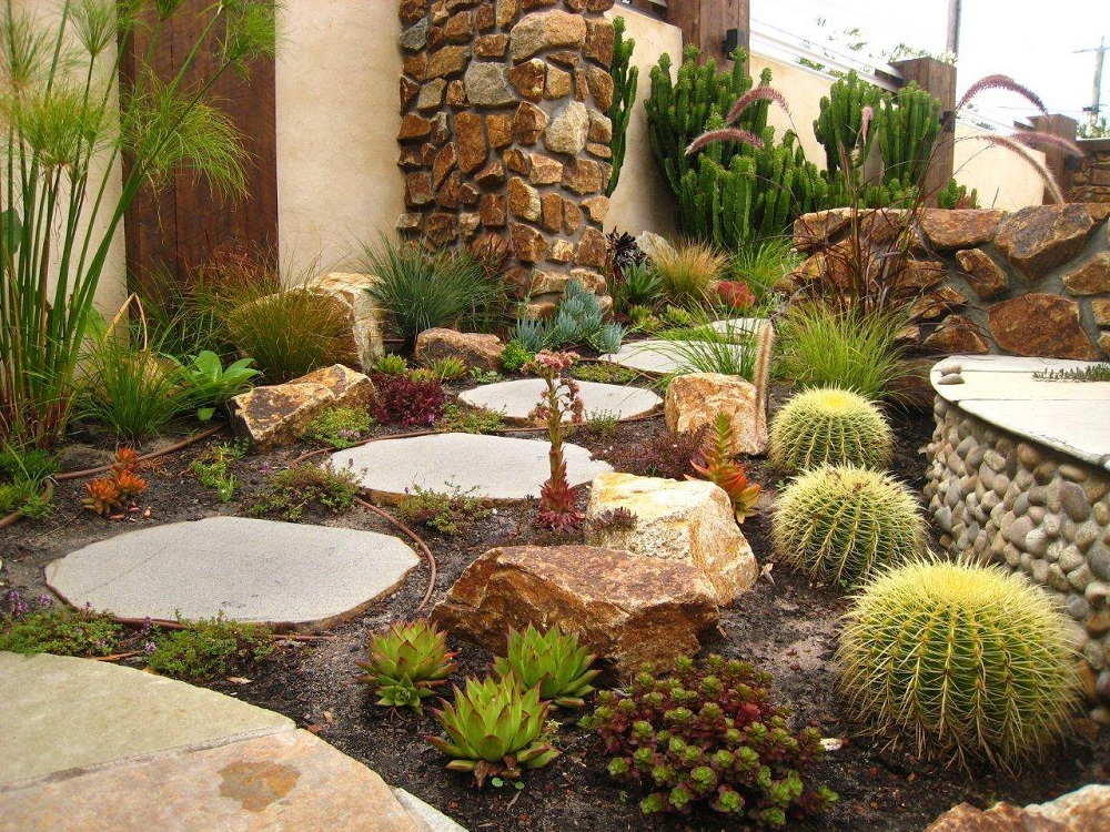 t3-1 Amazing cactus garden ideas to try out for your garden