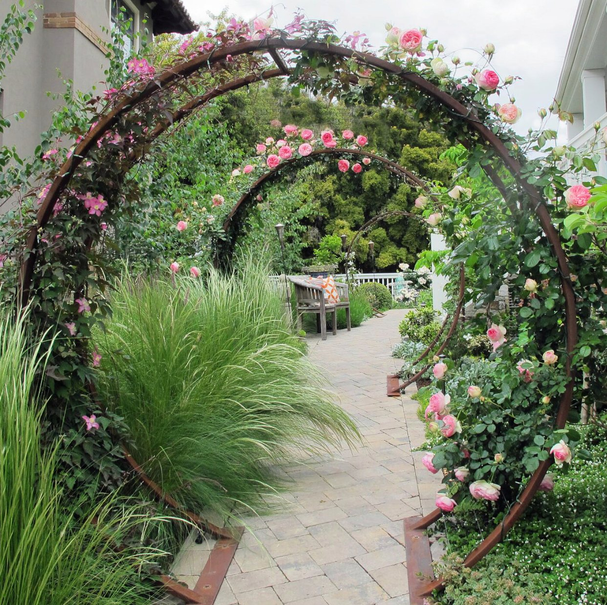 Gracie_modern_arbor_walkway_roses_arches ideas for garden grids that are inexpensive and look great