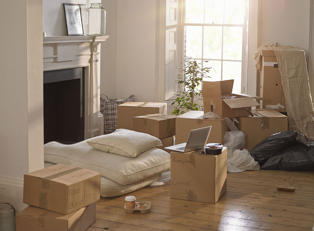 495164493 Things To Look For In A Mover