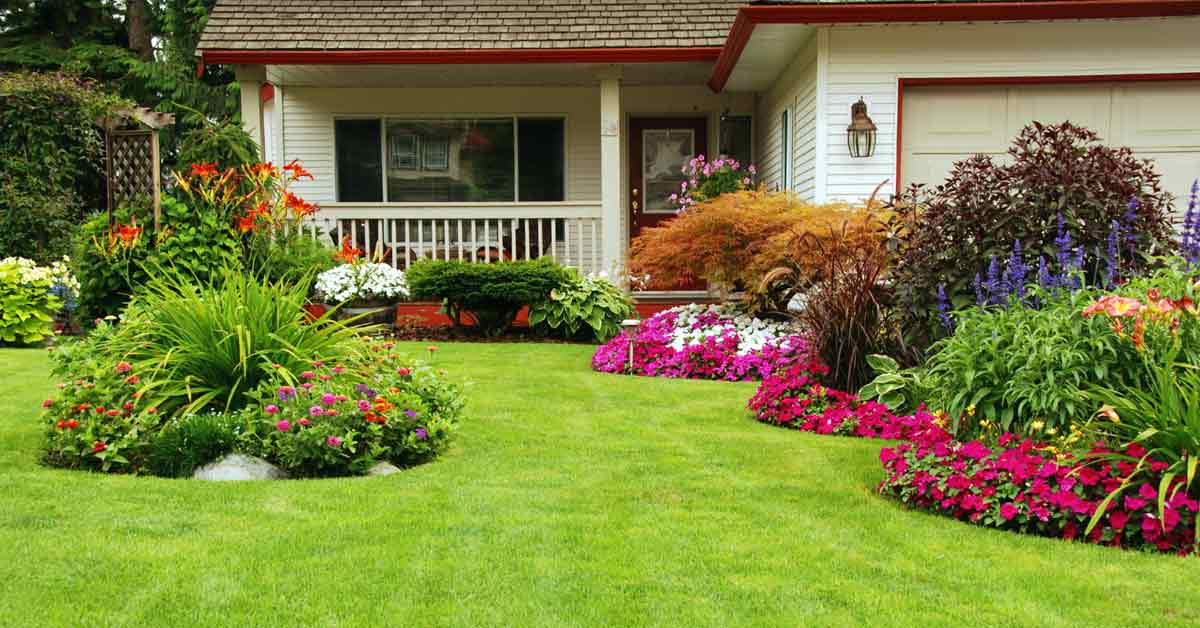 Are you planting the right grass for your   garden?