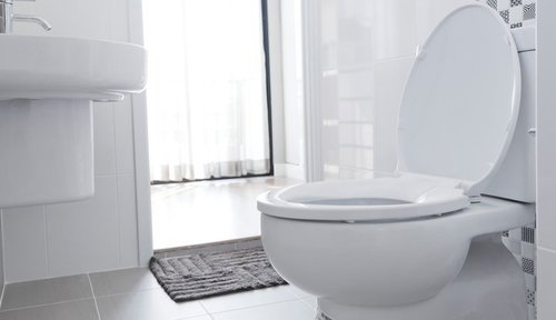 Comfort Height vs Standard Toilet - Pros, Cons, Comparisons and Cos