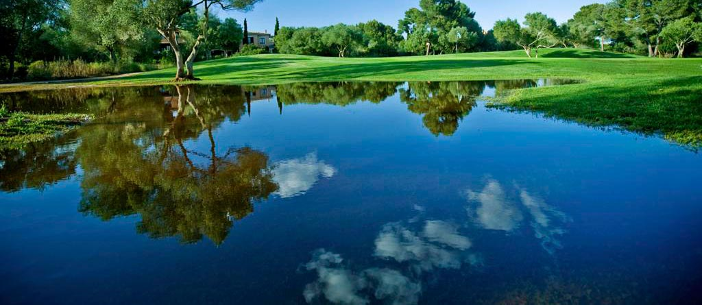 What Are The Benefits Of Pond Dye? - Water Quality Solutio