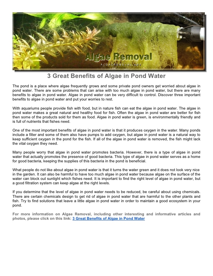 Benefits of algae for your pond