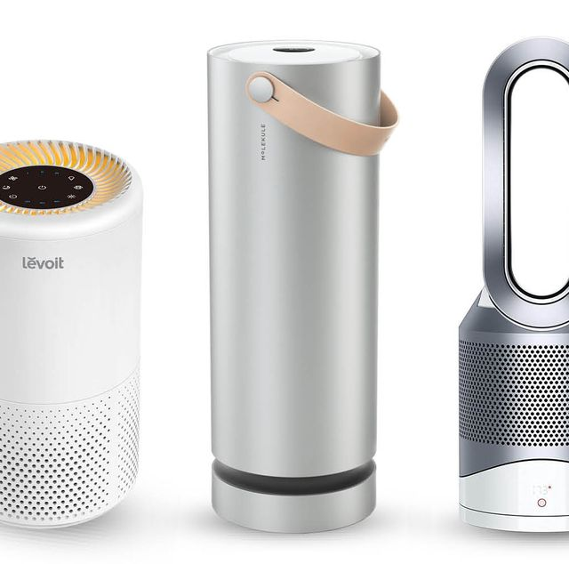 Best Air Purifiers 2020 | Air Purifiers for Allergies, Pets, Mo