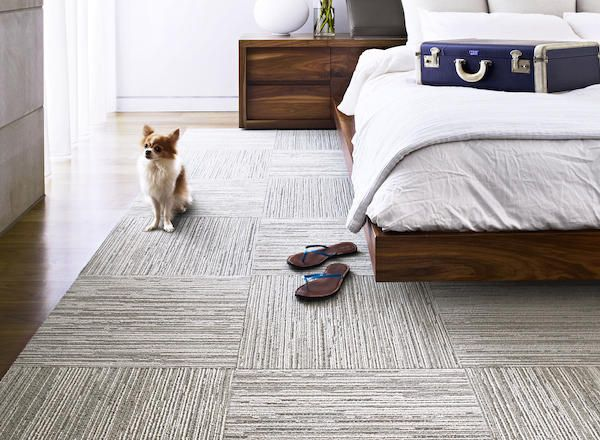 Small Apartment Buying Guide: The Best Bedroom Floor Options for .