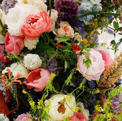 Chelsea Flower Show 2020 Virtual Show - Cancelled Show Ticket Refun