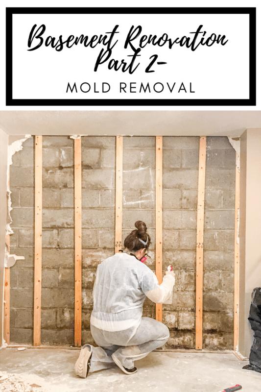basement mold remov