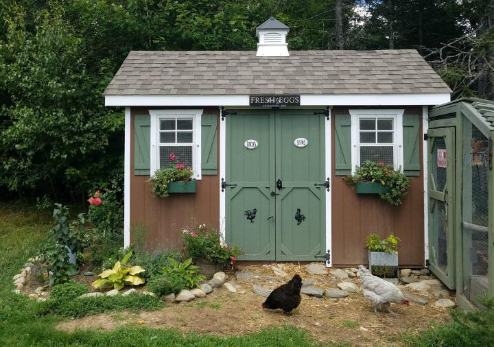 Chicken Coop Design Considerations | Old Farmer's Alman