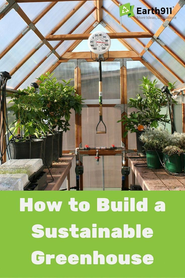 Discover how to build your own greenhouse