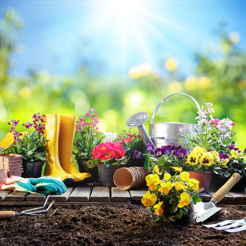 7 Health Benefits of Gardening - Get Healthy While Gardeni