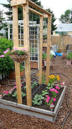 Several good trellis options on this site | Diy garden trellis .