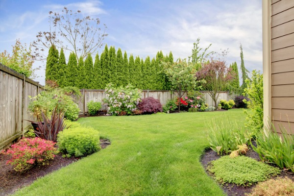 Five Tips for Getting the Most Out of Your Garden This Summer .