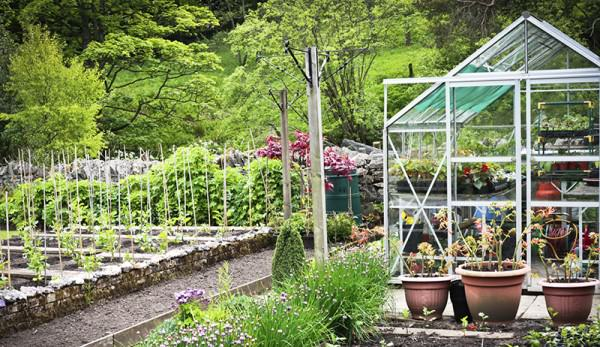 Get The Most Out Of Your Greenhouse - Hobby Far