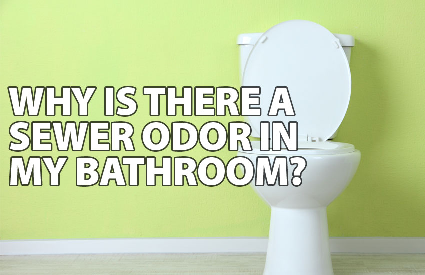 Why is There a Sewer Odor in My Bathroom? | Ben Franklin Bay Ar