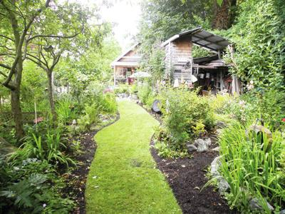 Learn how to create a wildlife sanctuary in your backyard | News .