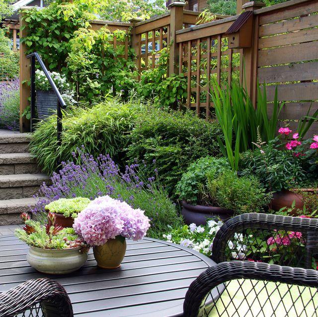 15 Cheap Garden Ideas - Best Garden Ideas On A Budg