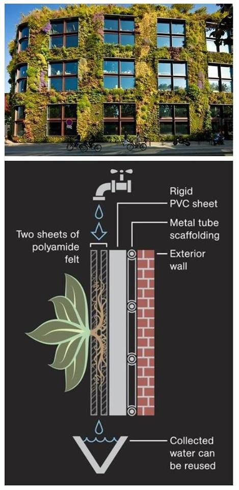 Pin by Robin Lester on ideas for outside projects | Vertical .