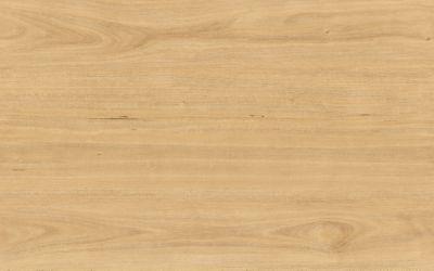 Tasmanian Oak: 3X388801 | Armstrong Flooring Commerci
