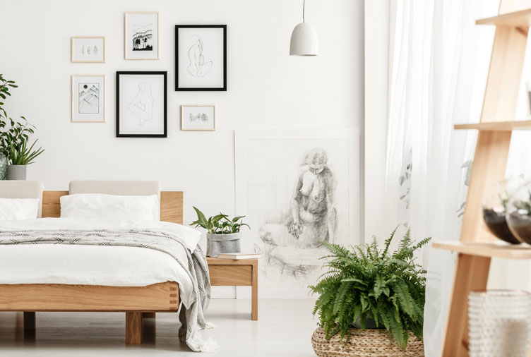 The 20 Best Bedroom Plants to Help You Get a Better Sle