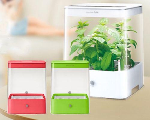 U-ING Green Farm Cube Hydroponic Grow B