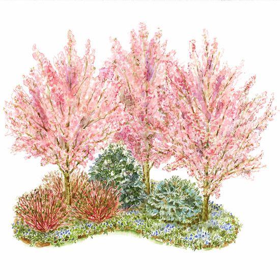 Stunning Corner Garden With Trees and Shrubs | Front yard garden .