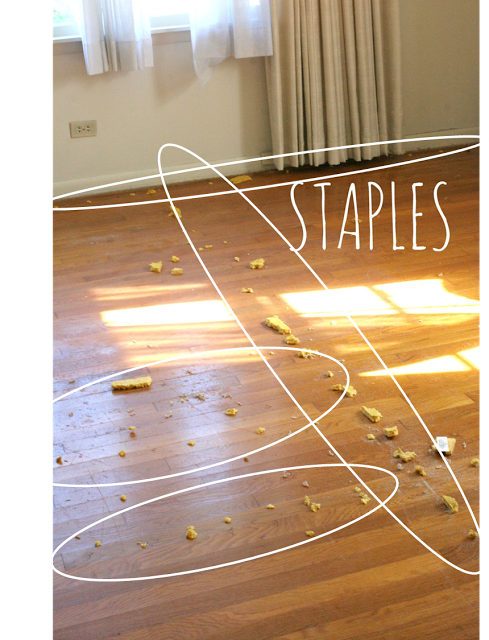 How to Remove Carpet Staples from Wood Floors | Removing carpet .