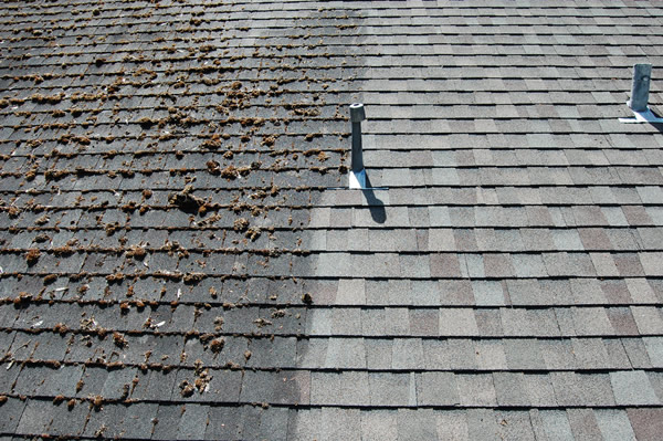 HOW TO: Clean Roof Shingles the Natural Way - POCO Building Suppli