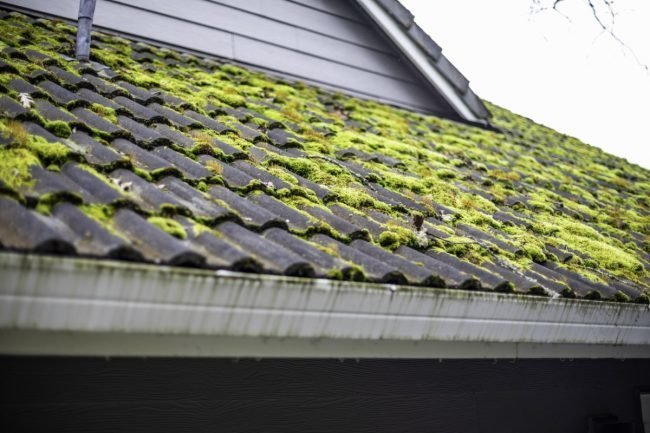 How to remove moss from the roof in a   natural way