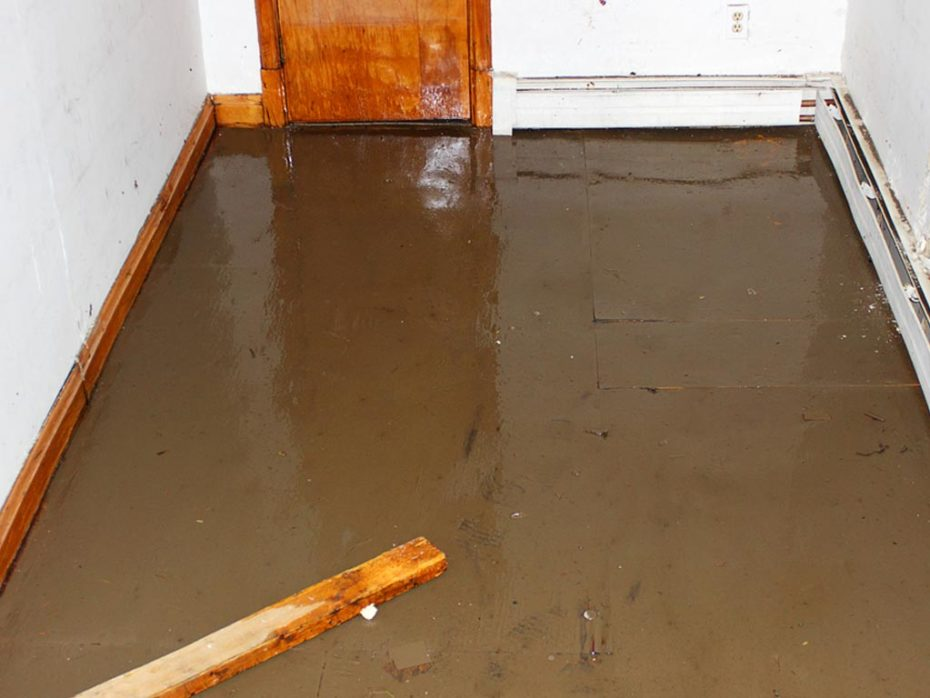 This is how you identify and repair water   damage in your basement – before the great flood