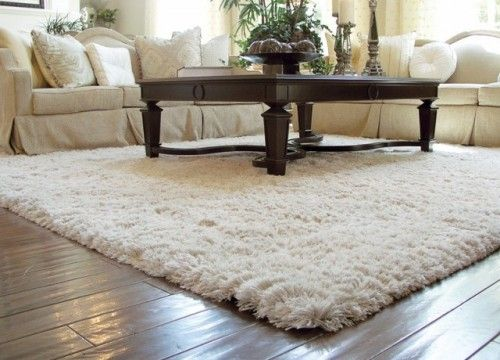 Tips for Decorating Home with Rugs | Shag rug living room, Living .