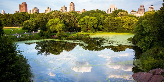 8 Most Beautiful Neighborhoods to Live in New York City - PropertyNe