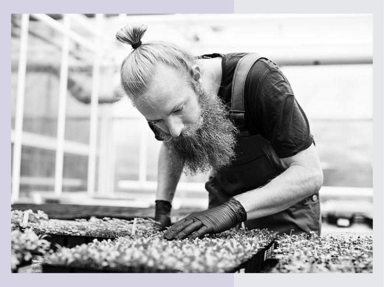 Gardening Jobs And Landscaping Jobs | Monster.c