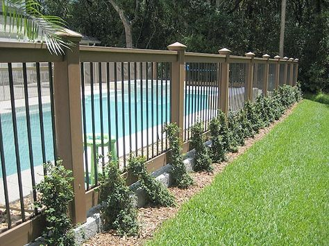 16 Pool Fence Ideas for Your Backyard (AWESOME GALLERY) | Backyard .