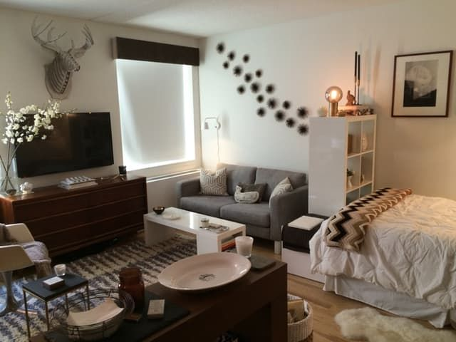5 Studio Apartment Layouts That Just Plain Work | Apartment layout .