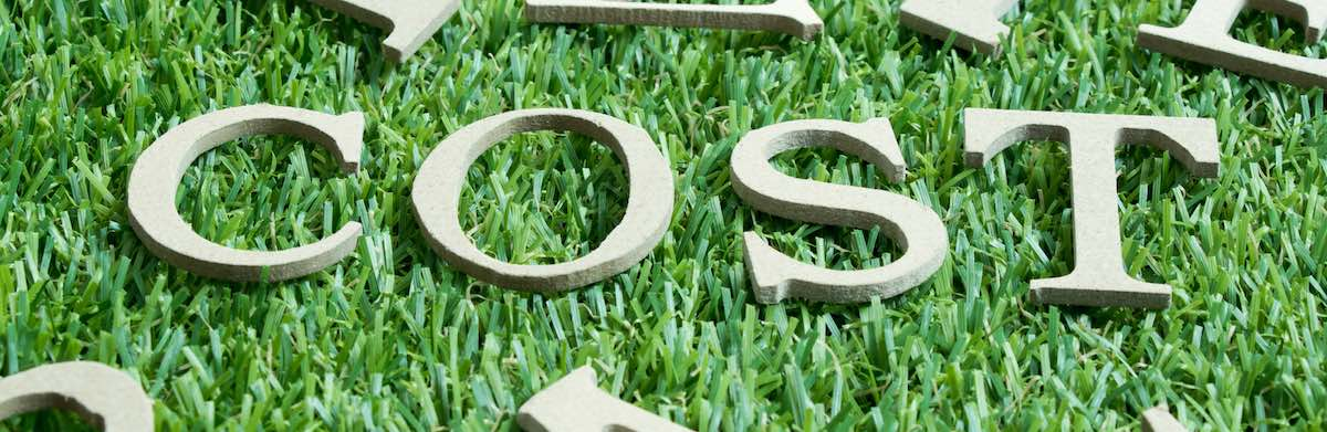 Artificial Grass Cost: How It Can Save You Money - Synthetic Grass D