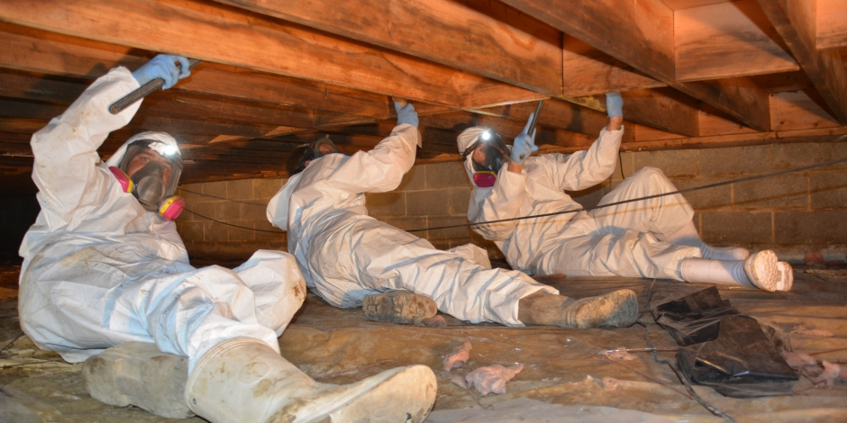 Crawl Space Repair | THP | Eastern & Annapolis Maryla