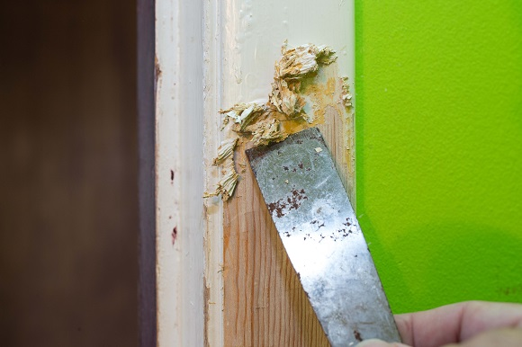 How to Remove Paint from Wood - Wood Finishes Dire