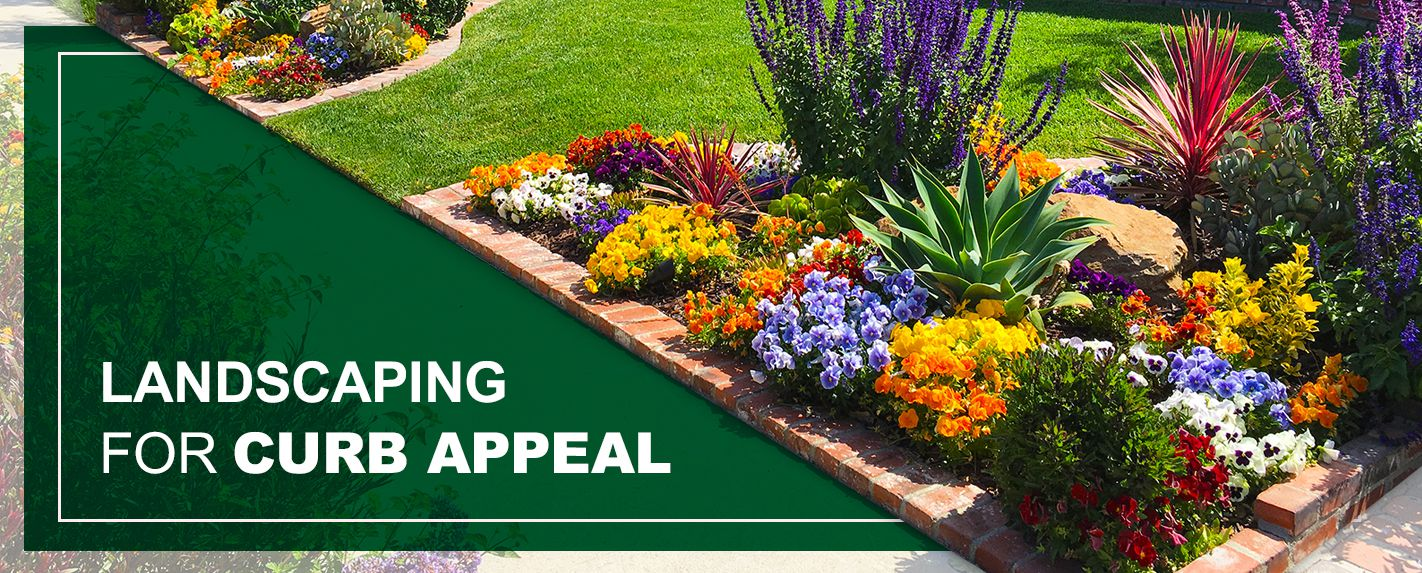 Top advantages of a well-kept lawn in   relation to the curb