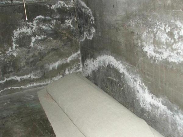 What is Basement Efflorescence? | Basement Waterproofing Greater .