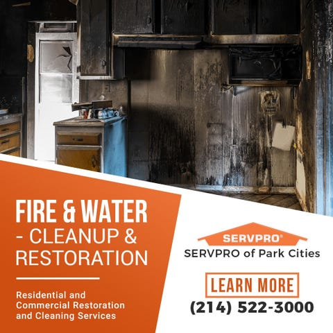 Park Cities SERVPRO Offers Mold Remediation Services - WF